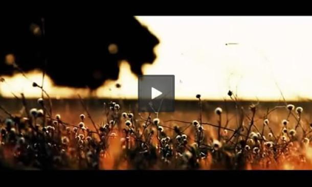 Nuevo Videoclip – Sus Manos